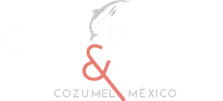 Coral Princess Golf Dive Resort Cozumel